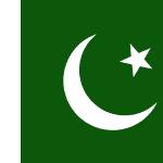 Double Tax Treaty Malta Pakistan Tax | Papilio Services Limited