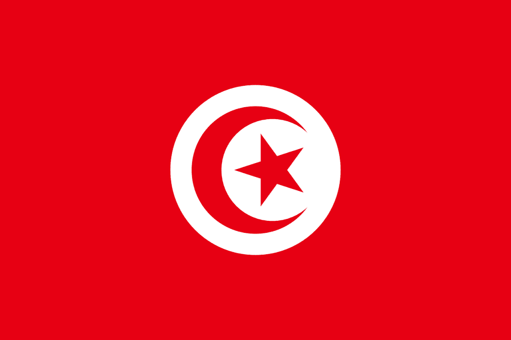 Double Tax Treaty Malta Tunisia Tax | Papilio Services Limited