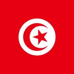 Double Tax Treaty Malta Tunisia Tax | Papilio Services Limited