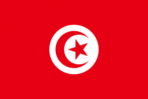 Double Tax Treaty Malta Tunisia
