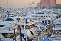 Palm Beach International Boat Show | Papilio Services Limited