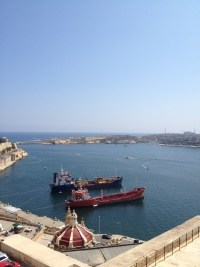Maltese Merchant Shipping Act | Papilio Services Limited