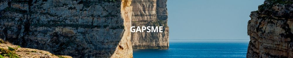 GAPSME (General Accounting Principles for Small and Medium Sized Entities)